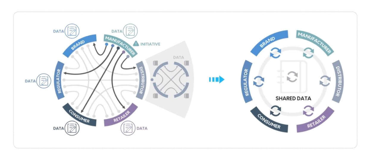 VeChain Business structure