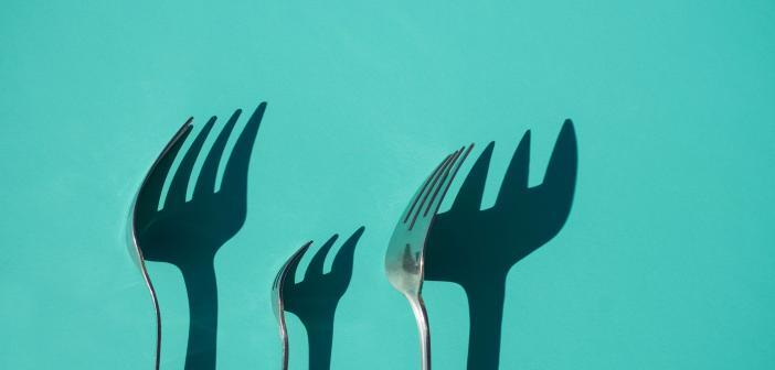 What is a Cryptocurrency Fork?