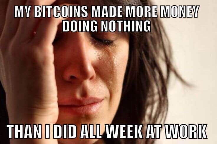 crazy bitcoin investment meme