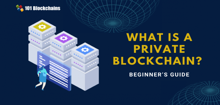 what is a private blockchain