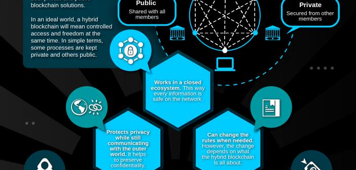 Hybrid Blockchain infographics
