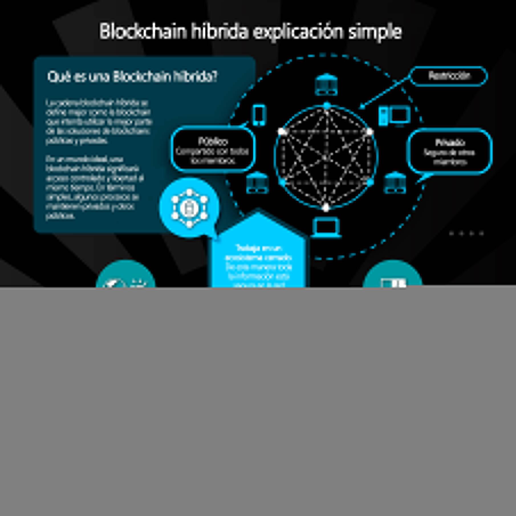 blockchain híbrida explicación simple - Infografía