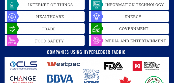 hyperledger fabric use cases and companies