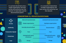 private blockchain vs consortium blockchain