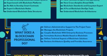 blockchain professional