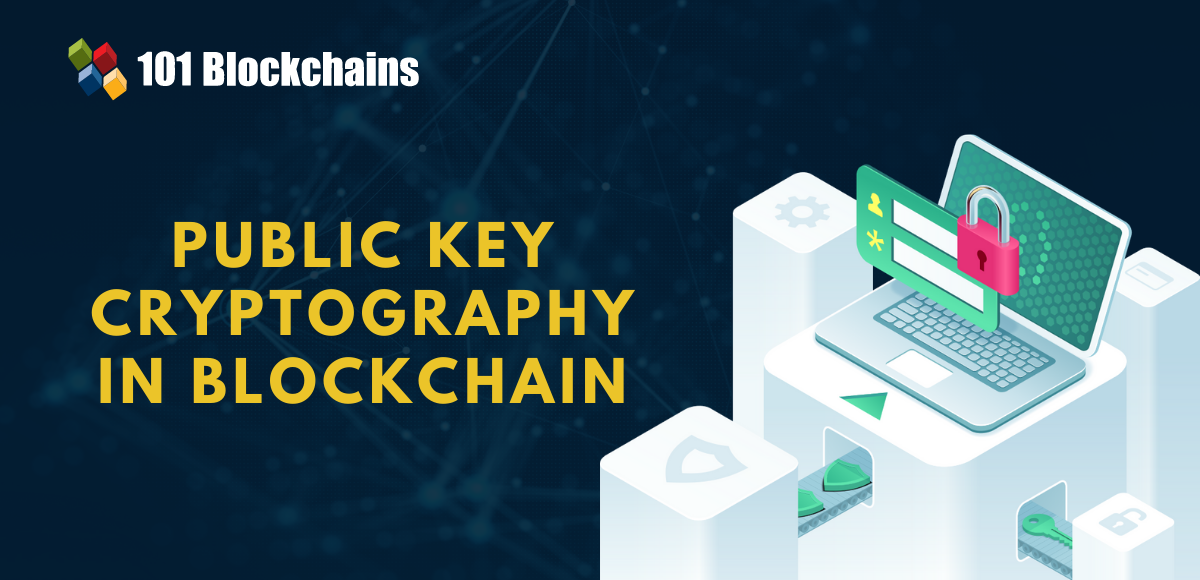 public key cryptography in blockchain